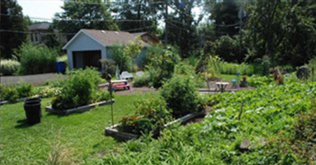 Chicago Private School - Garden